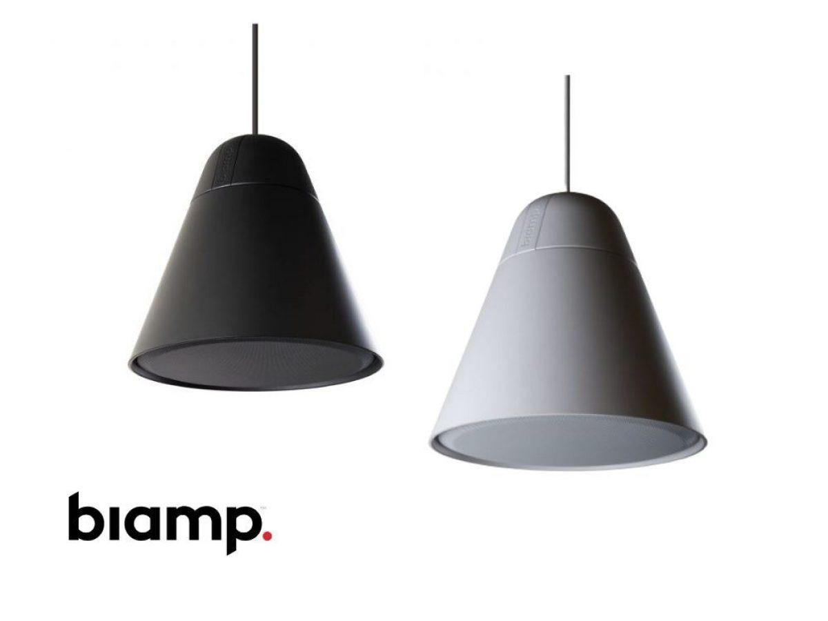 Biamp Apart P30 DT