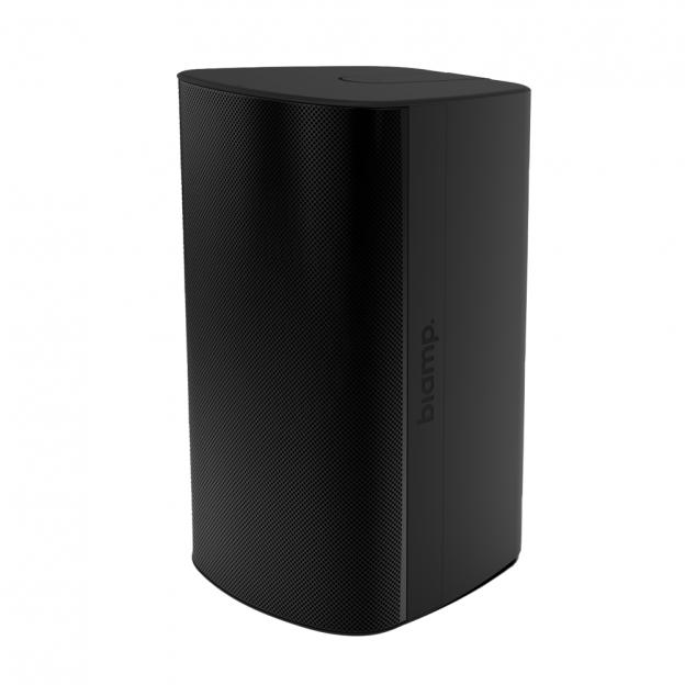 Biamp Desono EX S10 CM Black